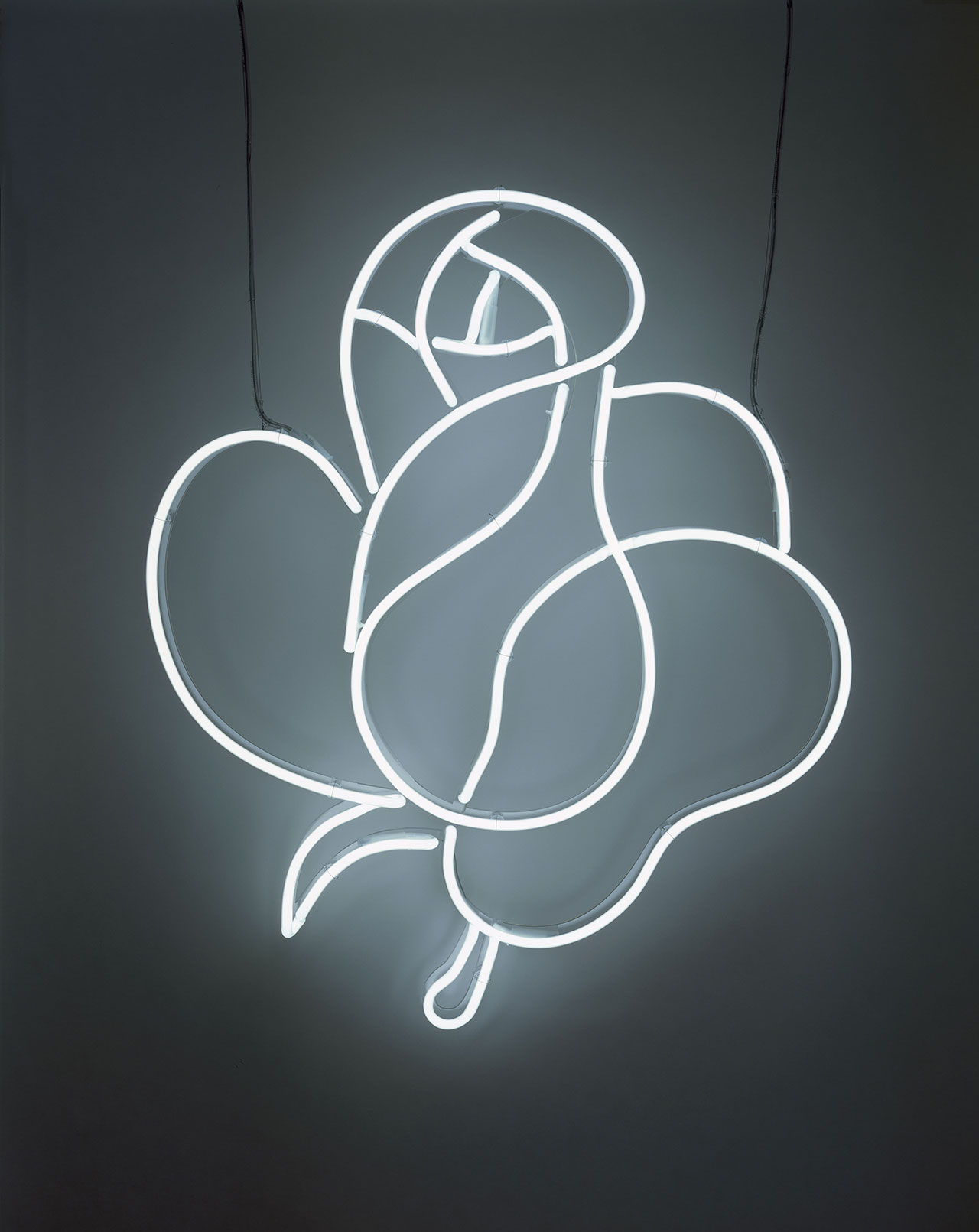 Cerith Wyn Evans, Untitled – Takashimaya Rose (White), 2007. © Cerith Wyn Evans. Courtesy White Cube. Photo: Todd-White Art Photography.