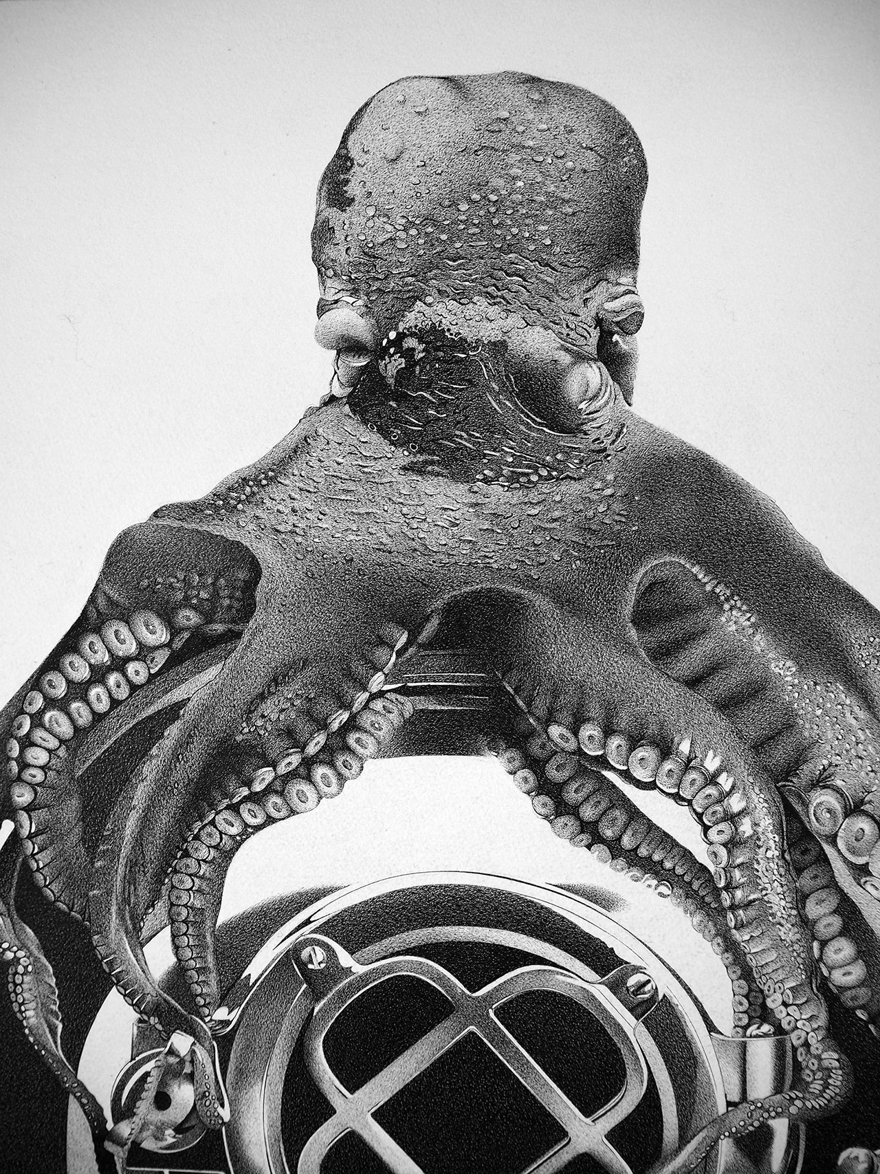 Alessandro Paglia, OCTOPUS (detail), 75 x 100 cm.