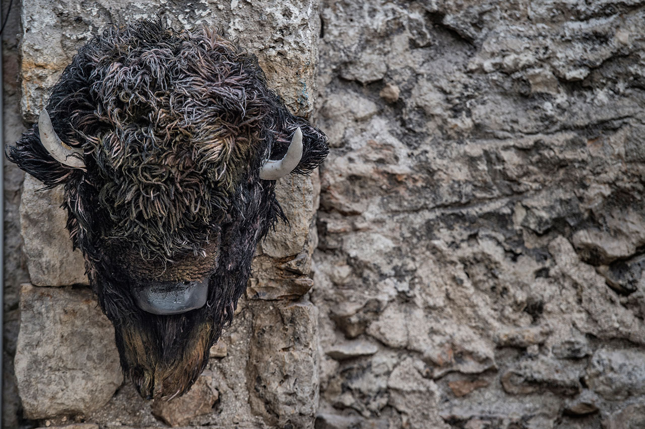 Nikos Papadimitriou, Bison, 2008, mixed media, 50x70x50cm. Installation view. Pirée, Piraeus, Greece. Styling by Costas Voyatzis, photo by Kosmas Koumianos for Yatzer.com, © Pirée, 2016.