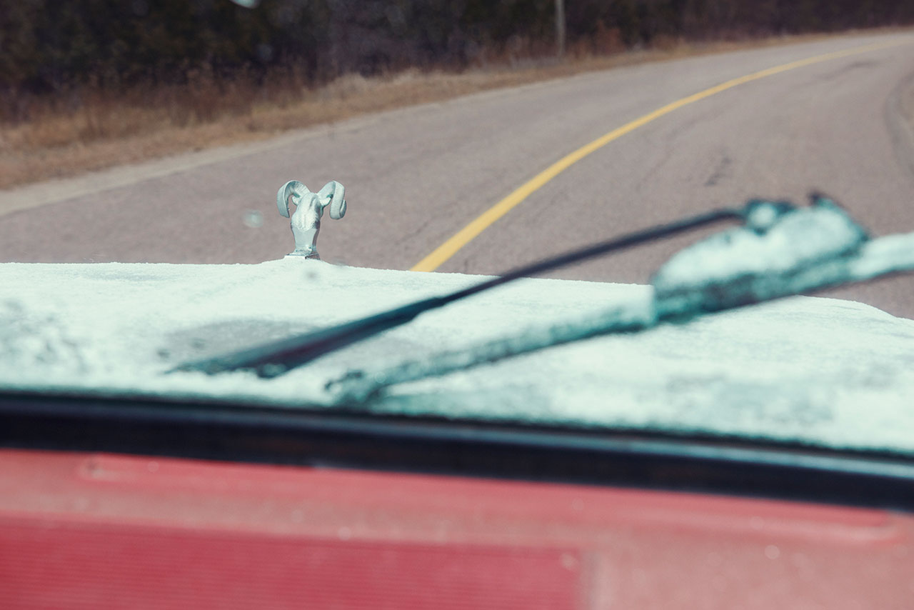 Photo © Kourtney Roy.