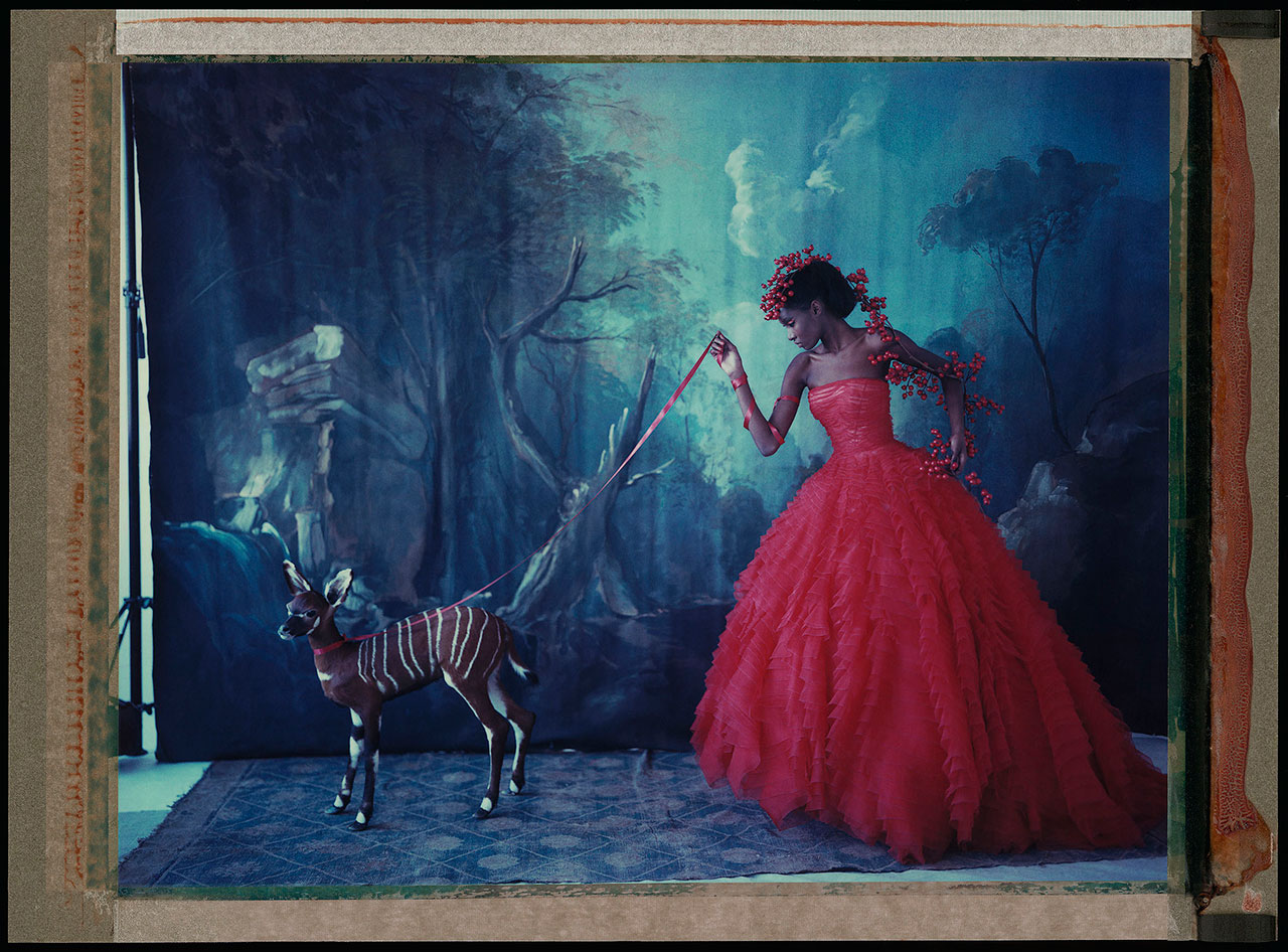 "Cathleen Naundorf ""L'arche de Noé XVIII"" Dior Haute Couture Summer 2012, Color-print from original polaroid, 2012."