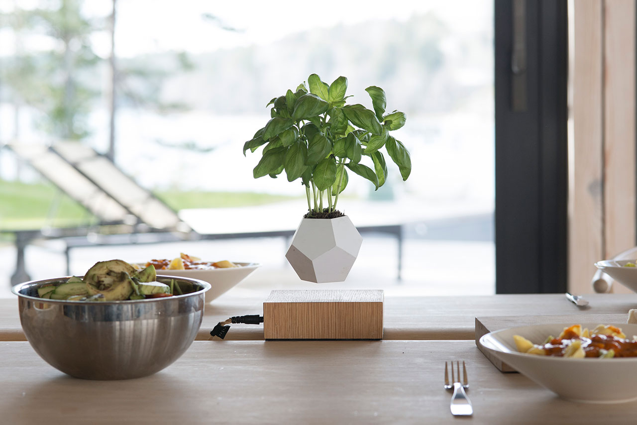 Keep Your Plants Floating With Lyfe A Zero Gravity