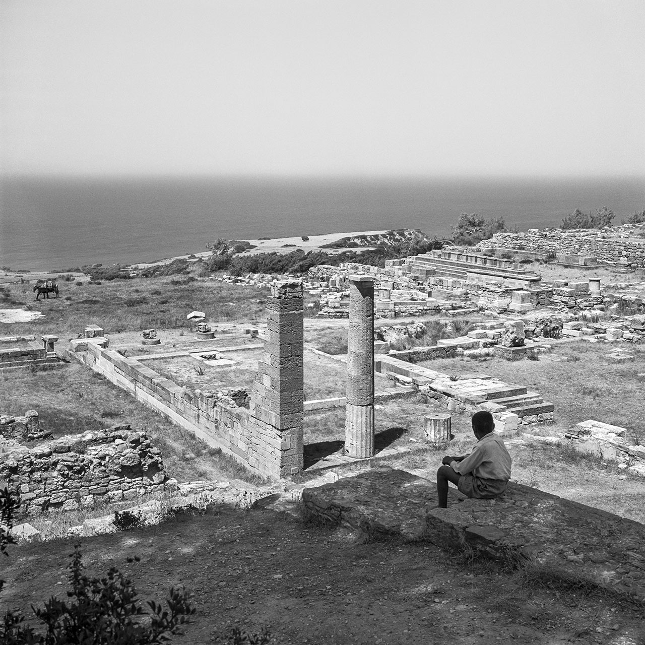 Kamiros, Rhodes 1954. Photo © Robert McCabe.