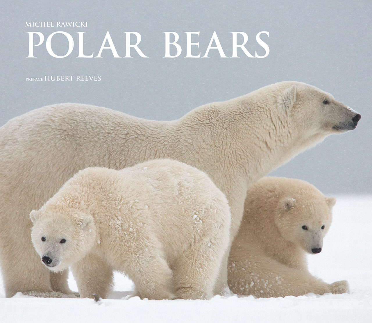 Michel Rawicki -Polar Bears, Book Cover.Kaktovik, Barter Island, Alaska, USA.Photo by Michel Rawicki © ACC Arts Books Ltd © Albin Michel.