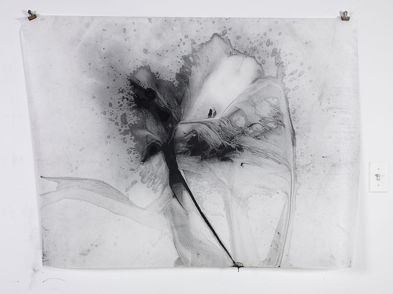 Julie Tremblay, The Nature of Nature 20. Photo courtesy Zidoun Bossuyt Gallery.
