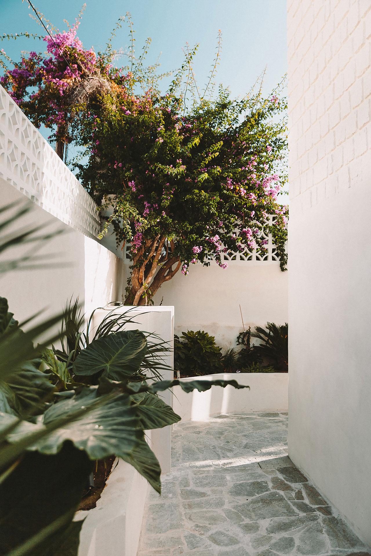 Casa Santa Teresa by Amelia Tavella. Photo by Thibaut Dini.
