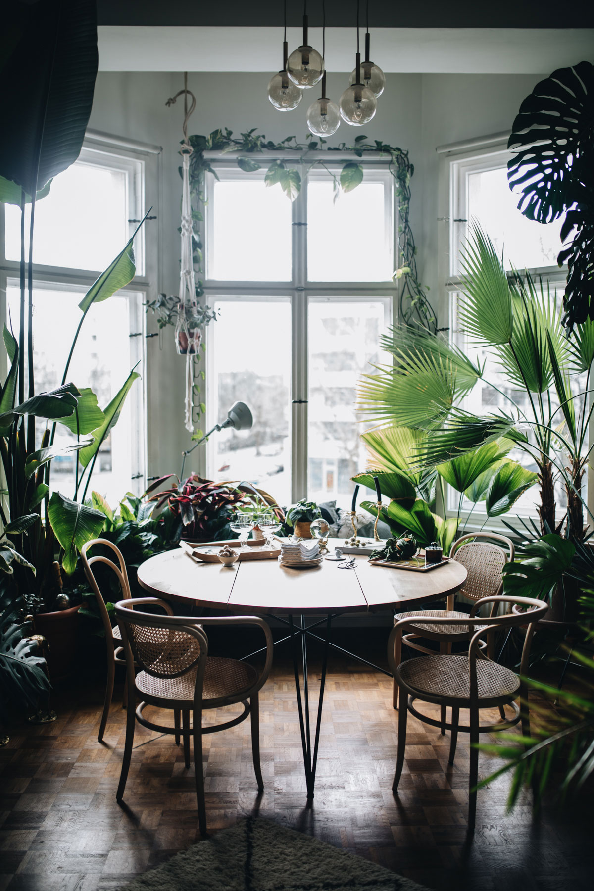 PLANT TRIBELIVING HAPPILY EVER AFTER WITH PLANTSBy Igor Josifovic & Judith de Graaff Photo: The home of Tim Labenda In Berlin.Photography by Jules Villbrandt for Urban Jungle Bloggers.