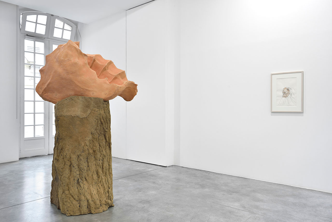 Giuseppe Penone, Ebbi, Avrò, Non ho. Installation view from Marian Goodman Gallery Paris (Show room). Courtesy the artist and Marian Goodman Gallery.