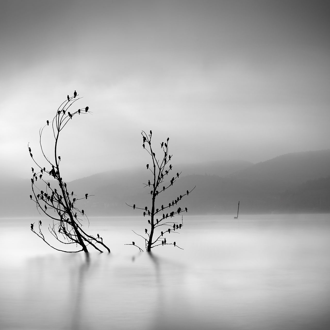George Digalakis, Ode to joy. © George Digalakis.
