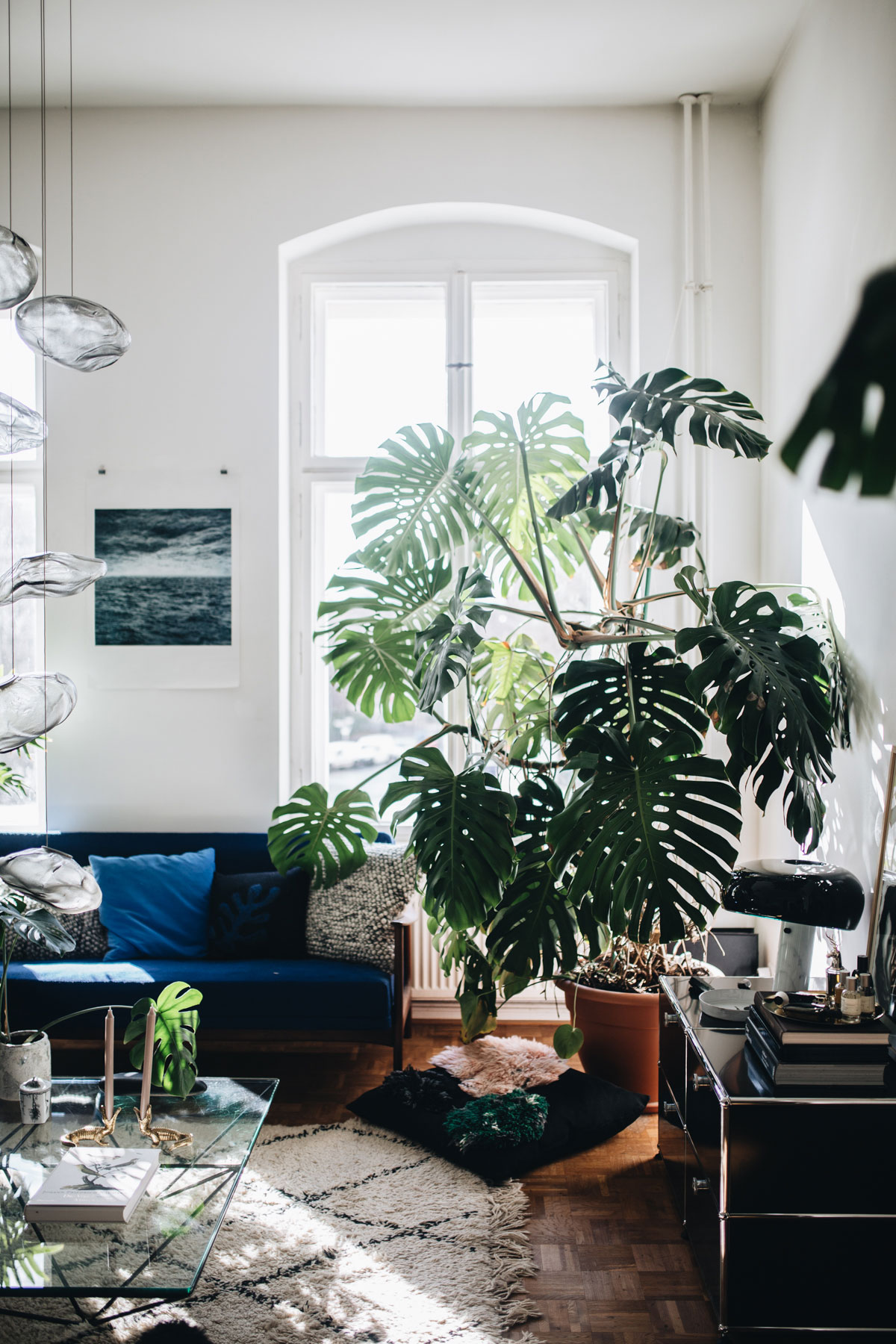 PLANT TRIBE LIVING HAPPILY EVER AFTER WITH PLANTSBy Igor Josifovic & Judith de Graaff Photo: The home of Tim Labenda In Berlin.Photography by Jules Villbrandt for Urban Jungle Bloggers.