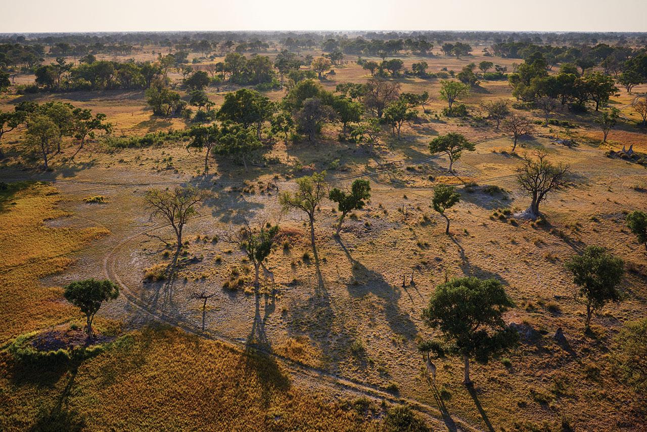 © Belmond Eagle Island Lodge Botswana.