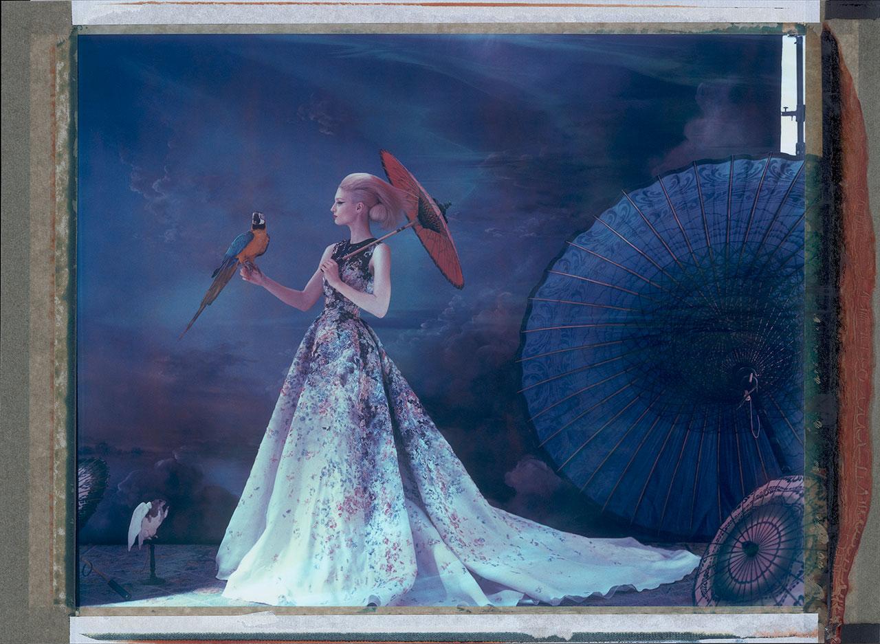 "Cathleen Naundorf ""L'arche de Noé XXXIII"" Elie SaabHaute Couture Summer 2014, Color-print from original polaroid,2014."
