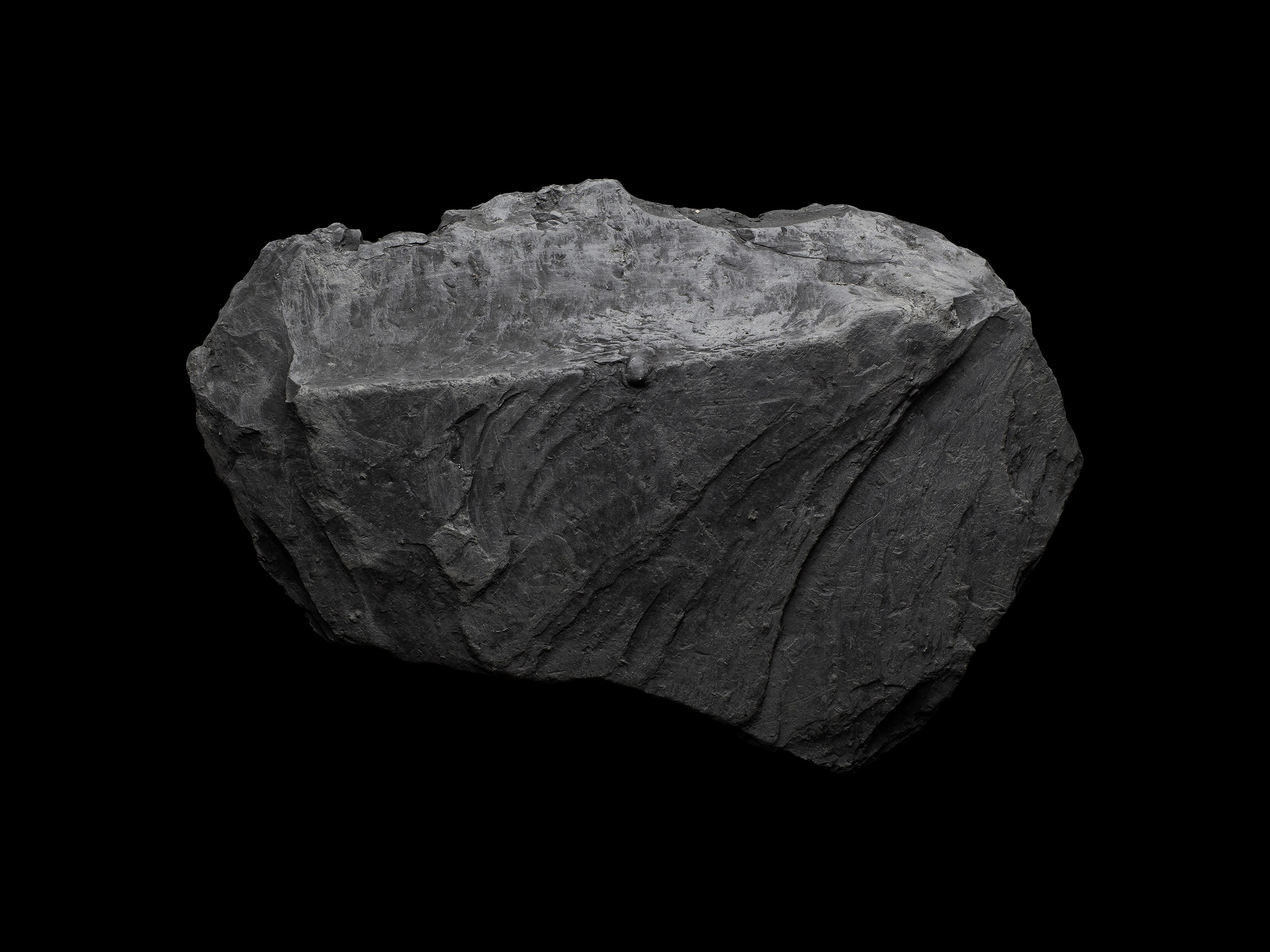 For the Rest of Us. A project by Hank Beyer and Alex Sizemore. Coal.