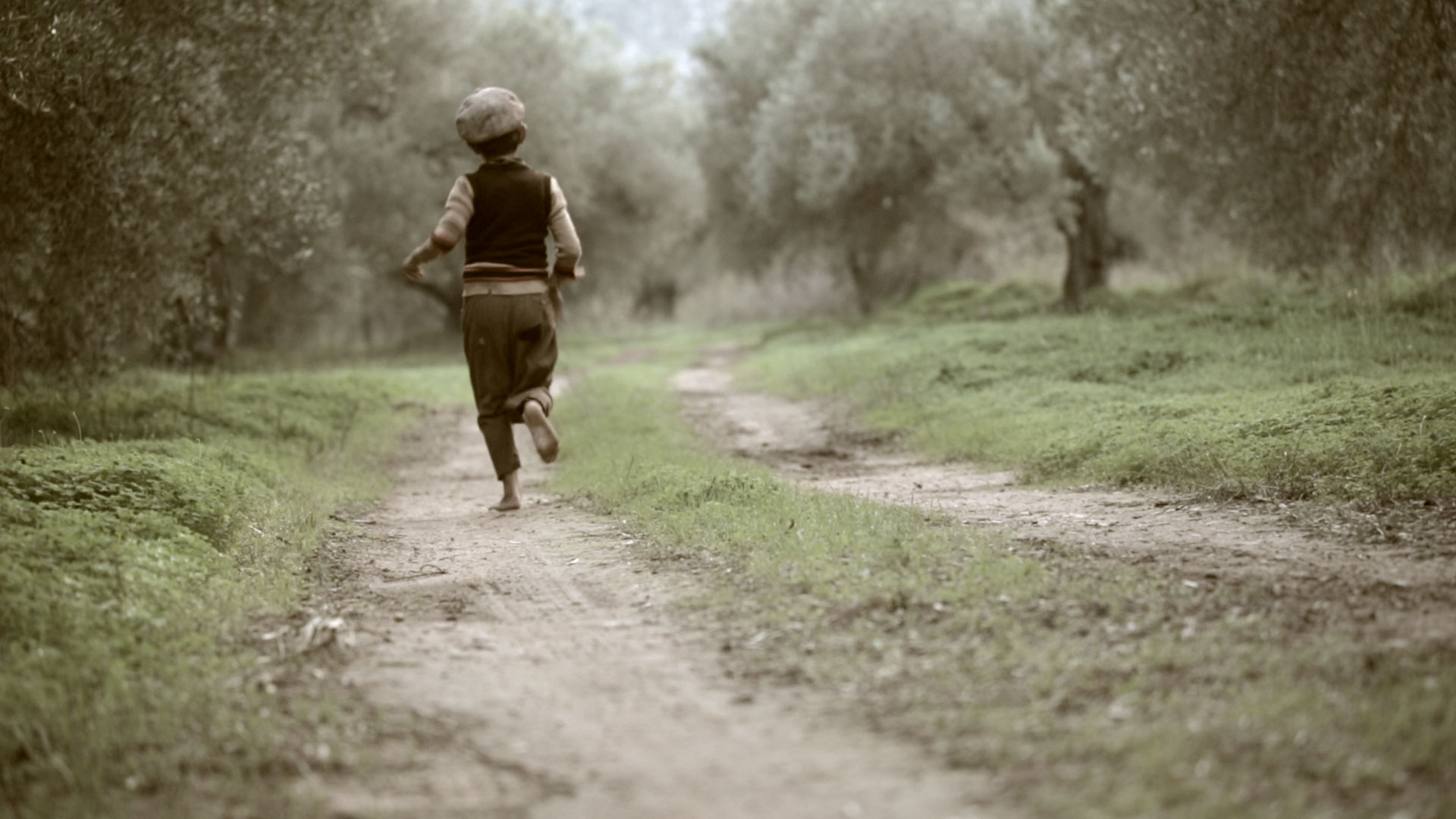''The Olive Tree Will Always Be Here'' film still, © Indigo View & GAEA.