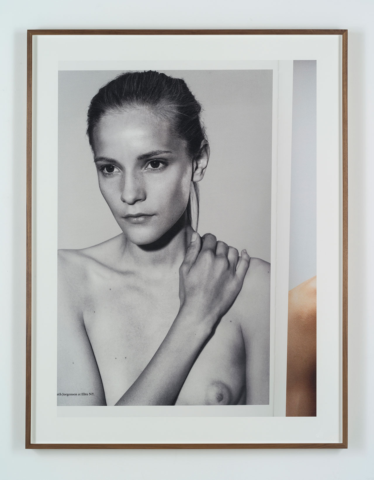 Collier Schorr (b. 1963), Dorothea, 2012, pigment print mounted on aluminum, 50 x 39 3/4 in. (127 x 101 cm.) image, 58 x 48 in. (147.3 x 121.9 cm.) framed. Copyright the artist. Courtesy Stuart Shave ModernArt, London and 303 Gallery, New York.
