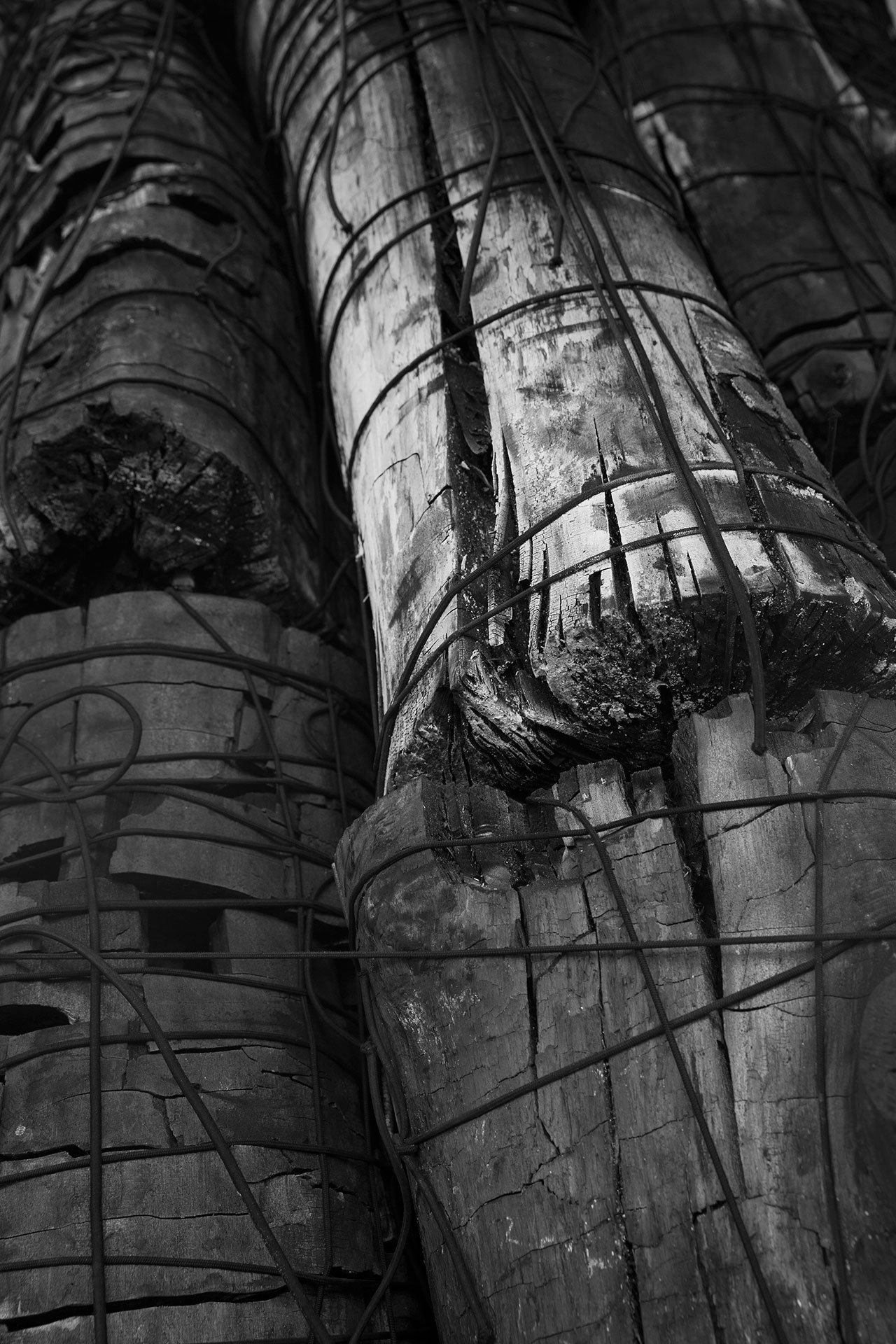 Issu du feu (detail), 2000. Charcoal trunks attached by elastic threads. © Lee Bae.
