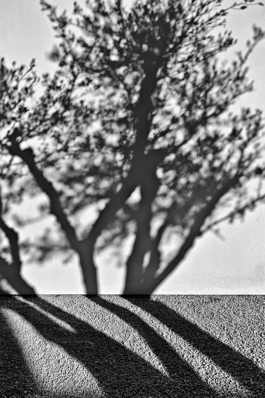 Photo © Serge Anton.