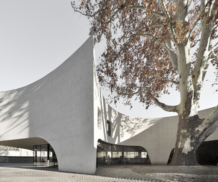 A Tree-Hugging Tourist Office in Northern Italy Echoes its Historical Surroundings