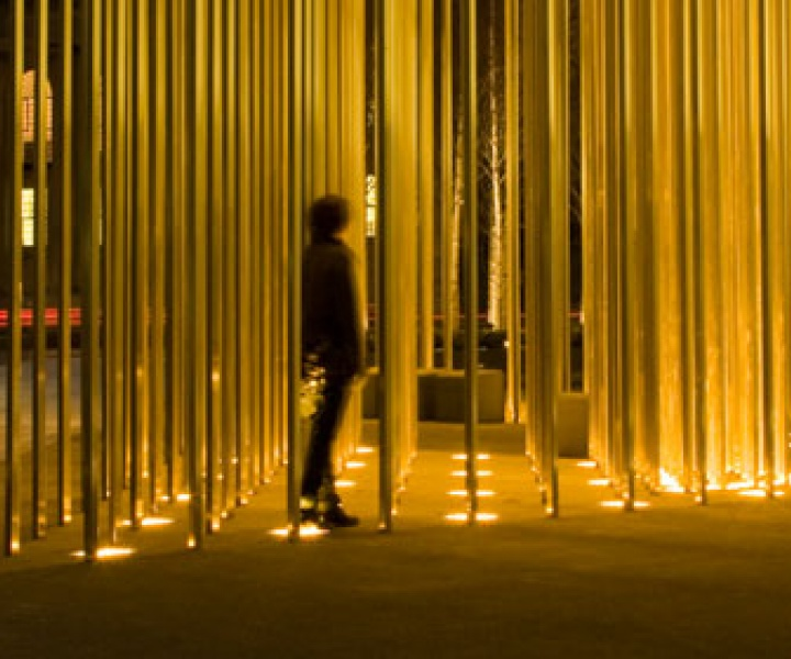 A Forest of Gold by Carmody Groarke