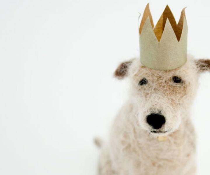 Domenica More Gordon's wonderful doggie adventures