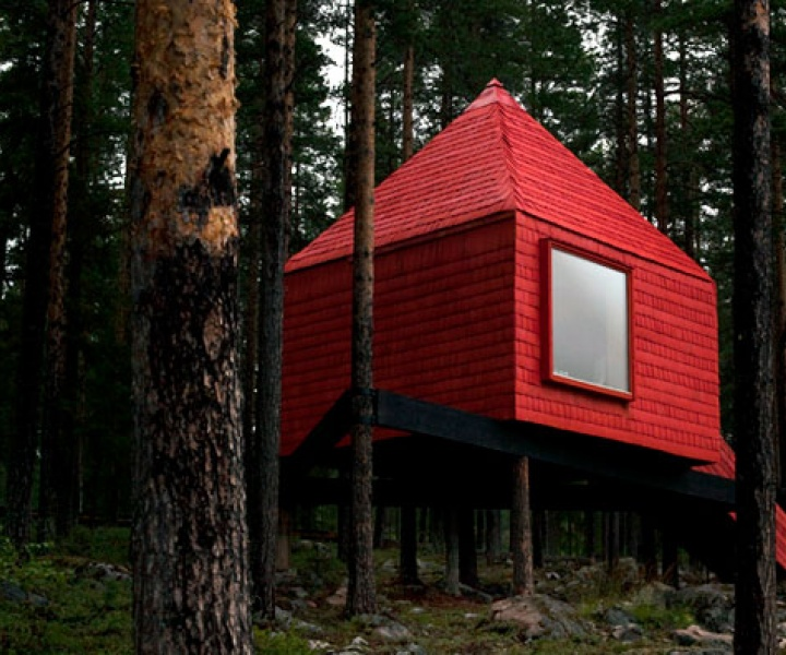 Treehotel...Sleep in Nature!