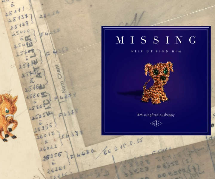 What would you do if you lost something precious? #MissingPreciousPuppy