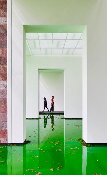 LIFE: Olafur Eliasson Allows Nature to Take Over the Fondation Beyeler